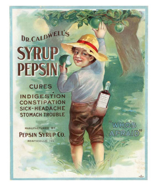 "Early cardboard litho medicine sign for Dr. Caldwell's Syrup Pepsin Cure (Forbes Litho, Boston), featuring beautifully detailed multi-color graphics of young boy picking apples with bottle of cure in his back pocket. Sign reads ""Dr. Caldwell's Syrup Pepsin cures Indigestion Constipation Sick-Headache Stomach Trouble Manufactured by Pepsin Syrup Co. Monticello, Ill.  Date unknown"