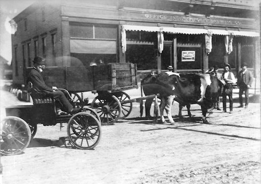 Photo of delivery wagon in front of Indianapolis Brewing Co. Office, date unknown.