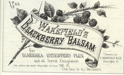 Wakefield's Blackberry Balsam advertisement, undated.