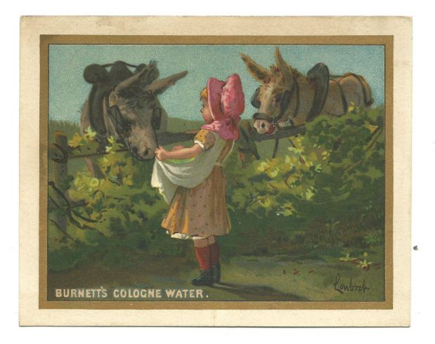 Burnett's Cologne, Extracts & Skin Care Victorian Trade Card, undated